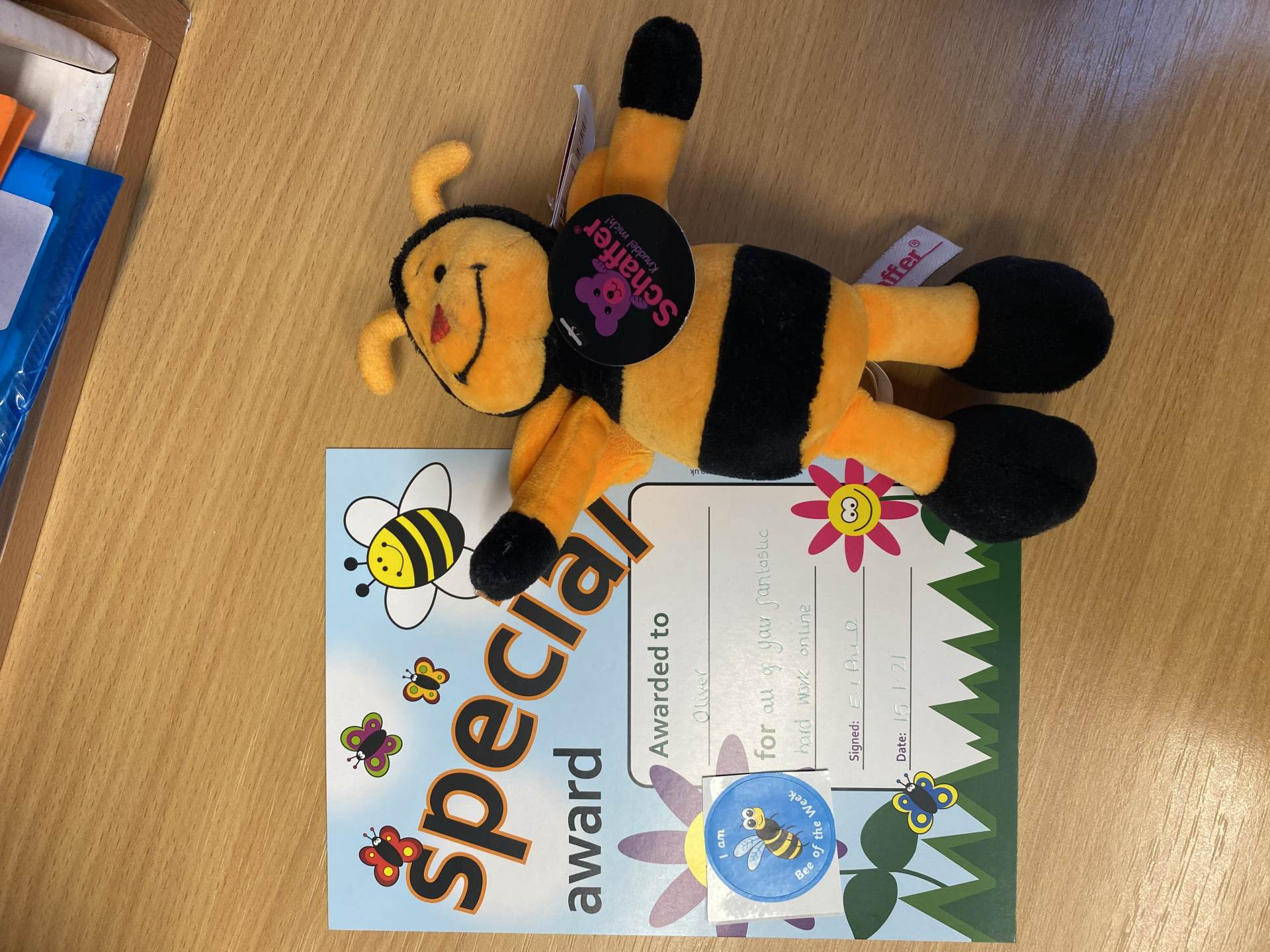 Bee of the Week W/E 15/01/21